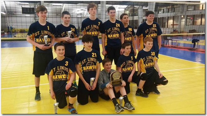 BoysVolleyballChampionship2015-3