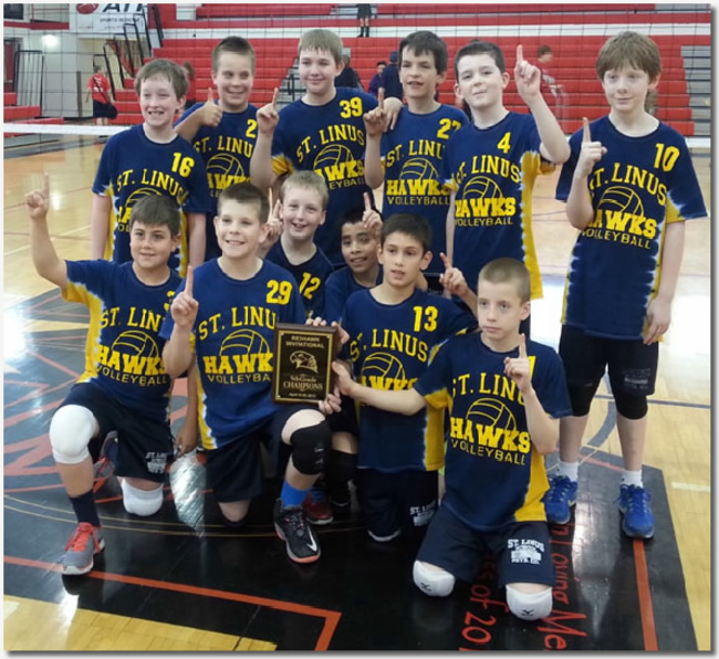 BoysVolleyballChampionship2015-6