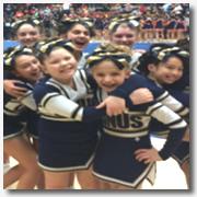 CheerleadingCompetition2014-SmallIcon