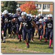 footballchampionship2016-smallicon2