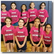 GirlsVolleyball4thGrade2016-SmallIcon